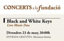 Concert Black and White Keys. Live Music Duo