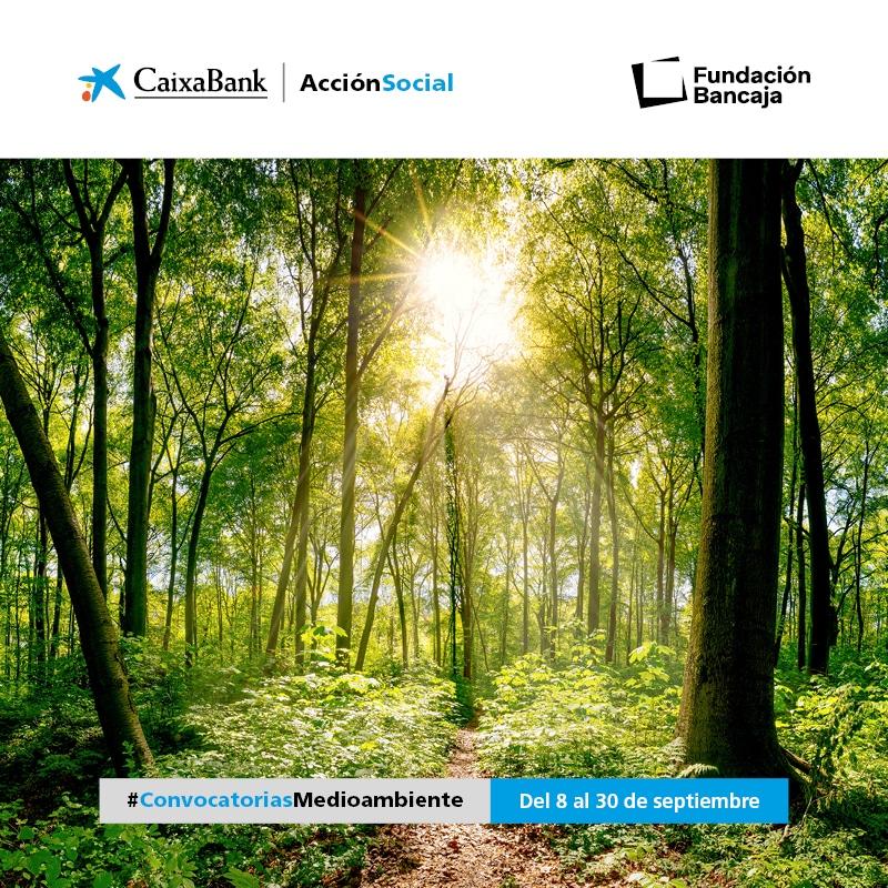 III Convocatoria Medioambiental Fundación Bancaja – CaixaBank